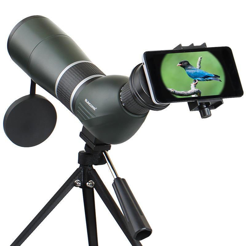 Quelle longue vue pour observer les oiseaux ?